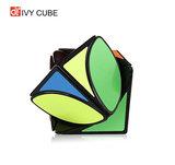Ivy Cube - Twist kubus breinbreker - 5.5x5.5x.5.5 cm_