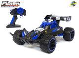 RC Race Buggy NQD - 2.4GHZ radio grafisch bestuurbare auto 12km/u - 1:16 - oplaadbaar + extra accu_
