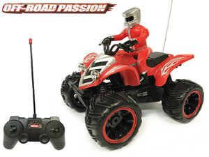 Dust Racer RC Off Road Quad 1:10 - beginners Elektro Achterwielaandrijving (oplaadbaar)